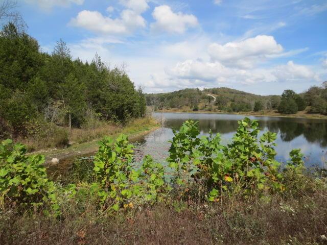 Willow Brook Lake & Dam Branson West, MO 65737
