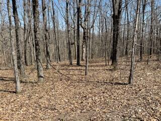 Property for sale at Lot 8 Buckskin, Highlandville,  Missouri 65669