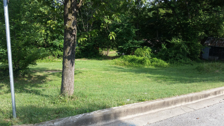 424 West Maddux Street Branson, MO 65616