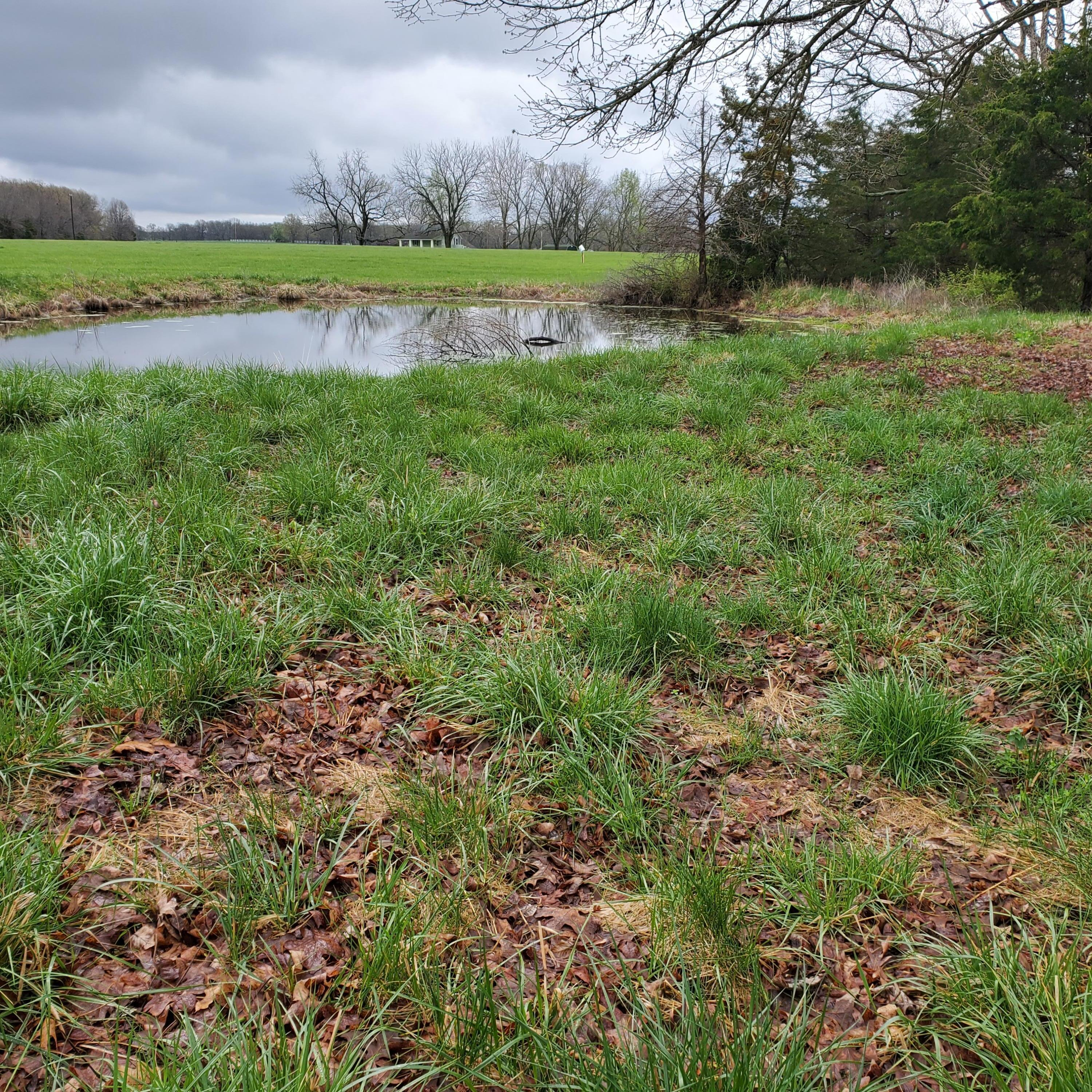 10094 East State Highway Ad-Tract Rogersville, MO 65742