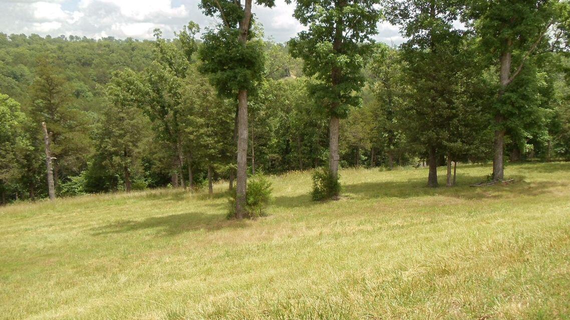 Property for sale at 116 Cedar Bluff, Saddlebrooke,  Missouri 65630