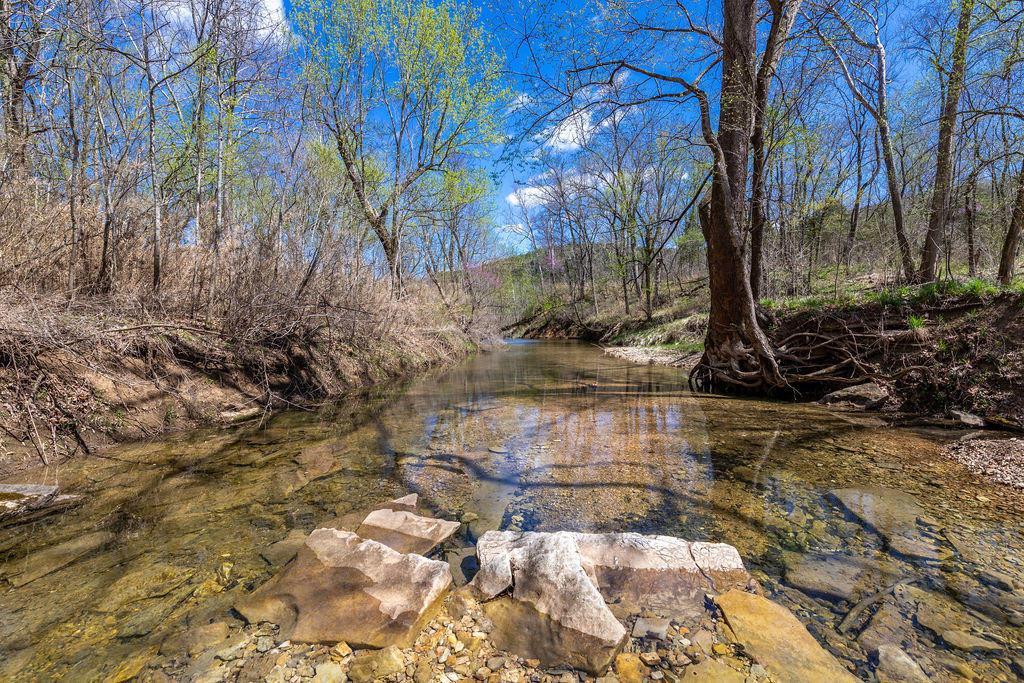 1311 Cr Eureka Springs, AR 72631