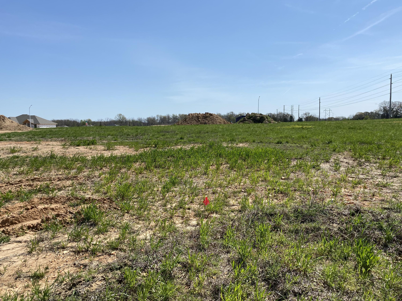 6096 South Crescent Road UNIT Lot 53 Battlefield, MO 65619