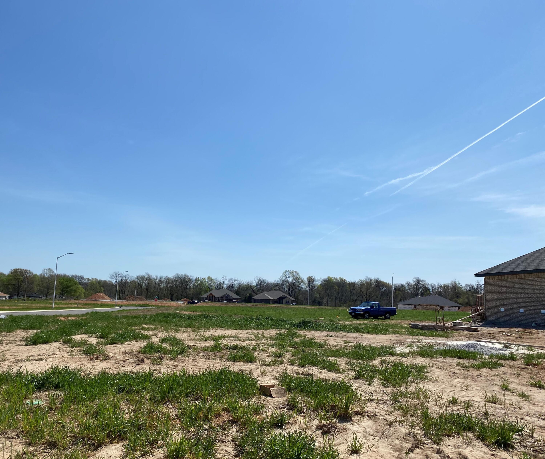 5914 South Willow Street UNIT Lot 63 Battlefield, MO 65619