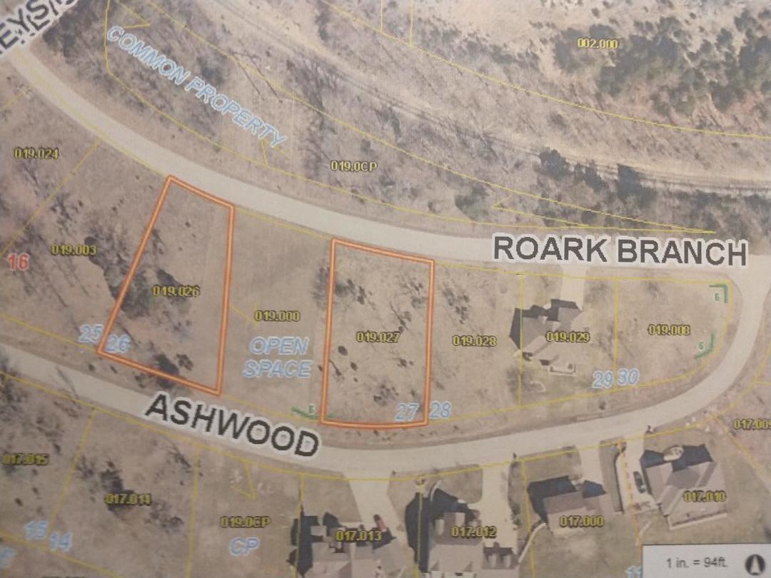 000 Roark Branch Drive-Stonebridge UNIT (Lot 26) Branson West, MO 65737