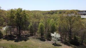000 Mo-413 Highway, Reeds Spring, MO 65737