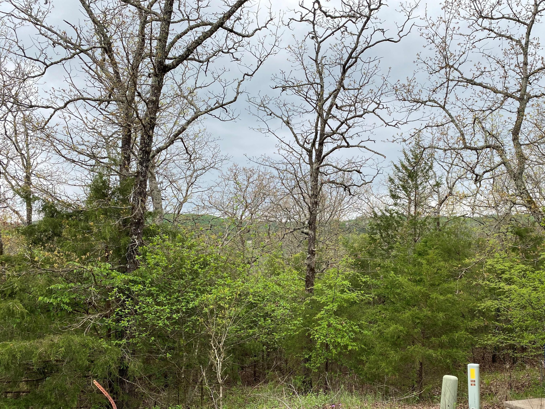 Property for sale at 000 Forest Lake Stonebridge Lot 22, Branson West,  Missouri 65737