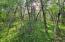 518 Dry Creek Drive, Cape Fair, MO 65624