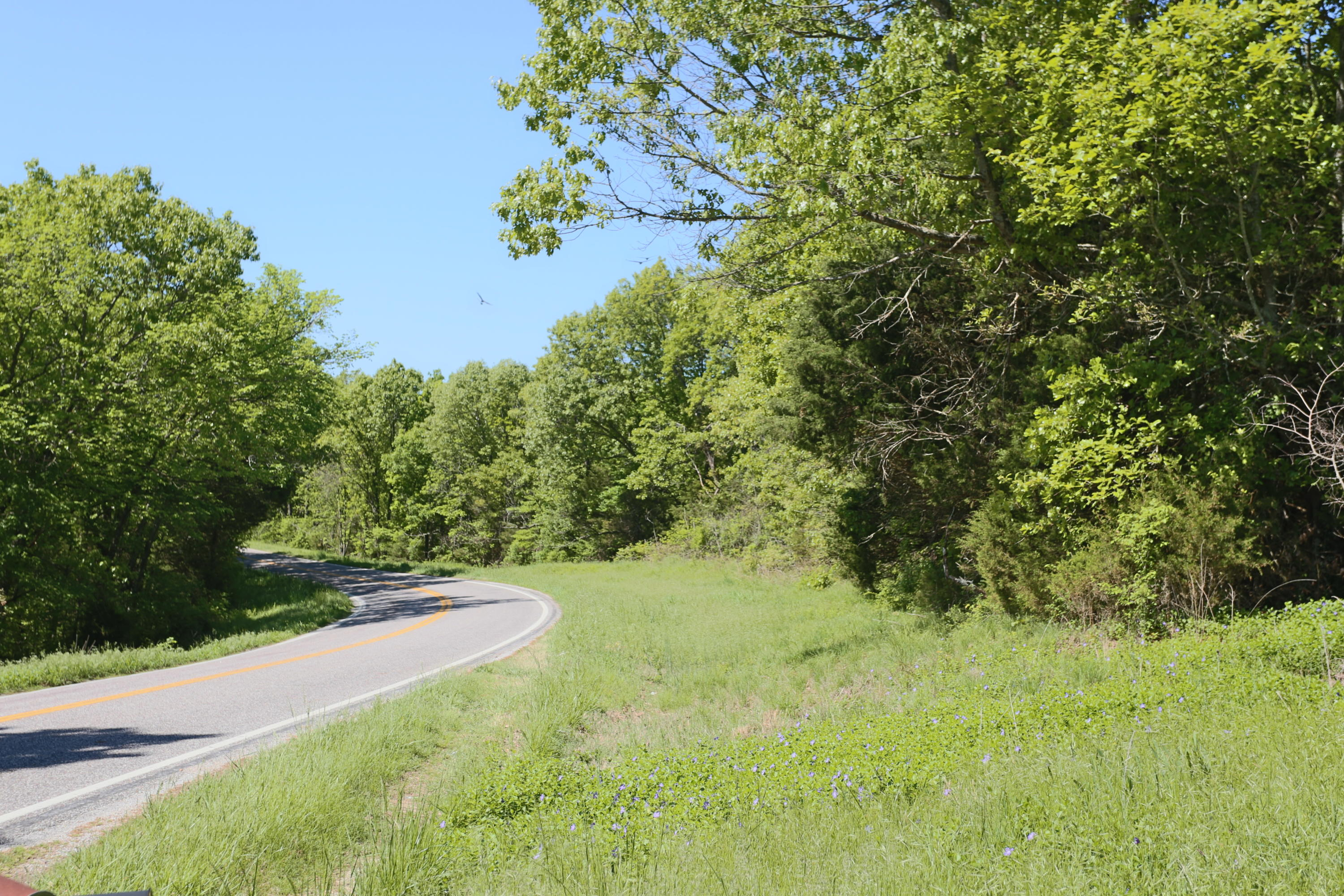 11017 West State Highway Cape Fair, MO 65624