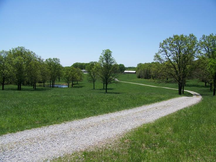 8896 State Route Zz West Plains, MO 65775