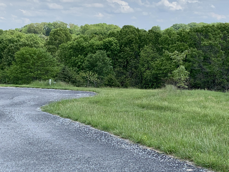 Lot 3 Vineyard Court Reeds Spring, MO 65737