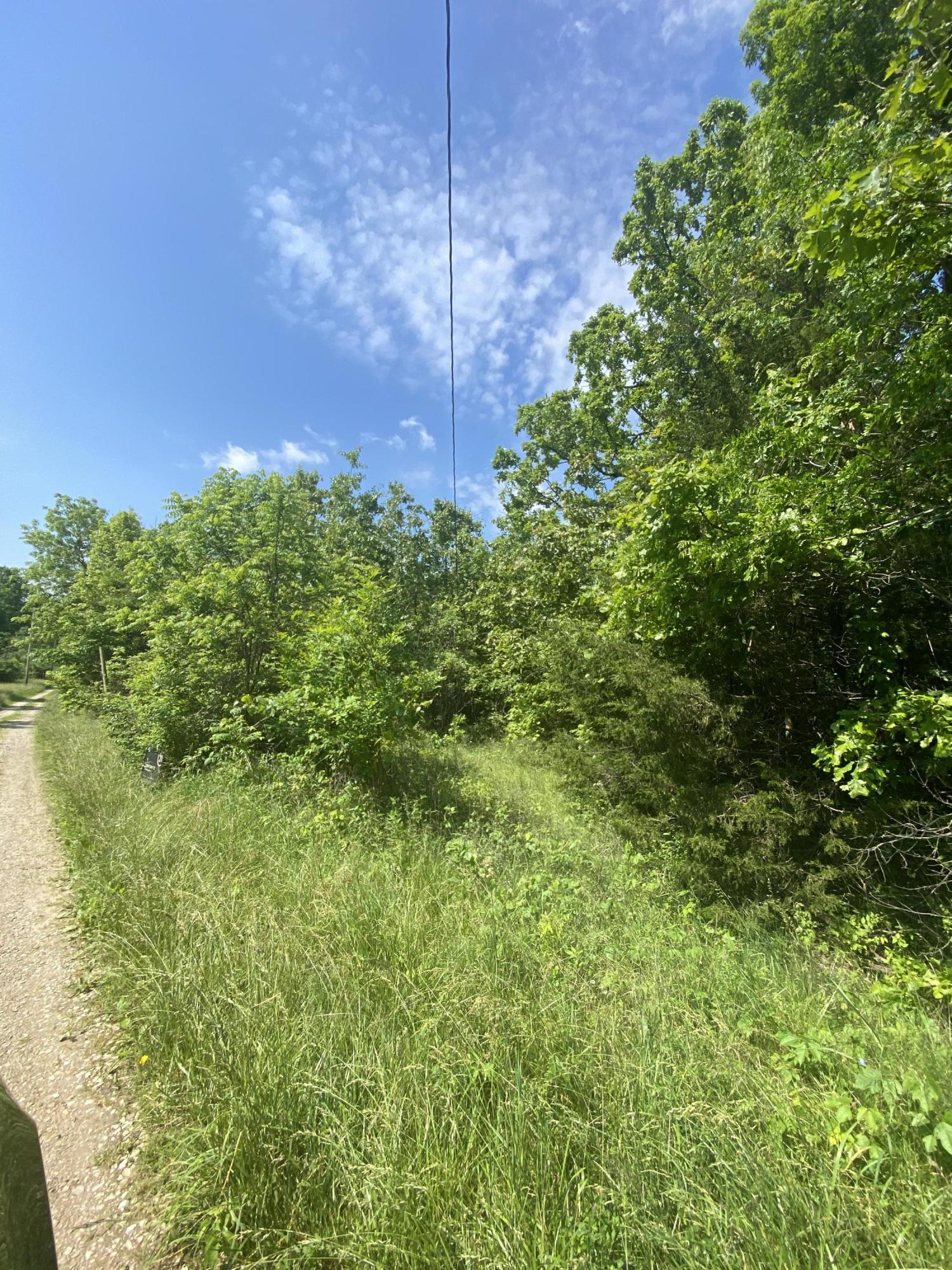 Property for sale at 000 Wildwood, Buffalo,  Missouri 65622