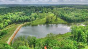 10781 State Highway Mm, Pottersville, MO 65790