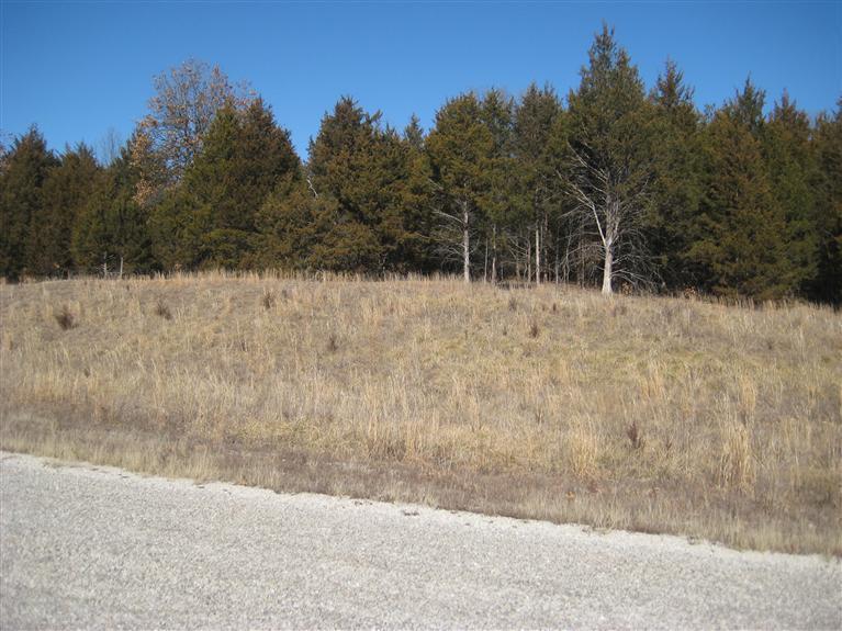 Lot 91 Niangua Ranch, Marshfield, Missouri 65706