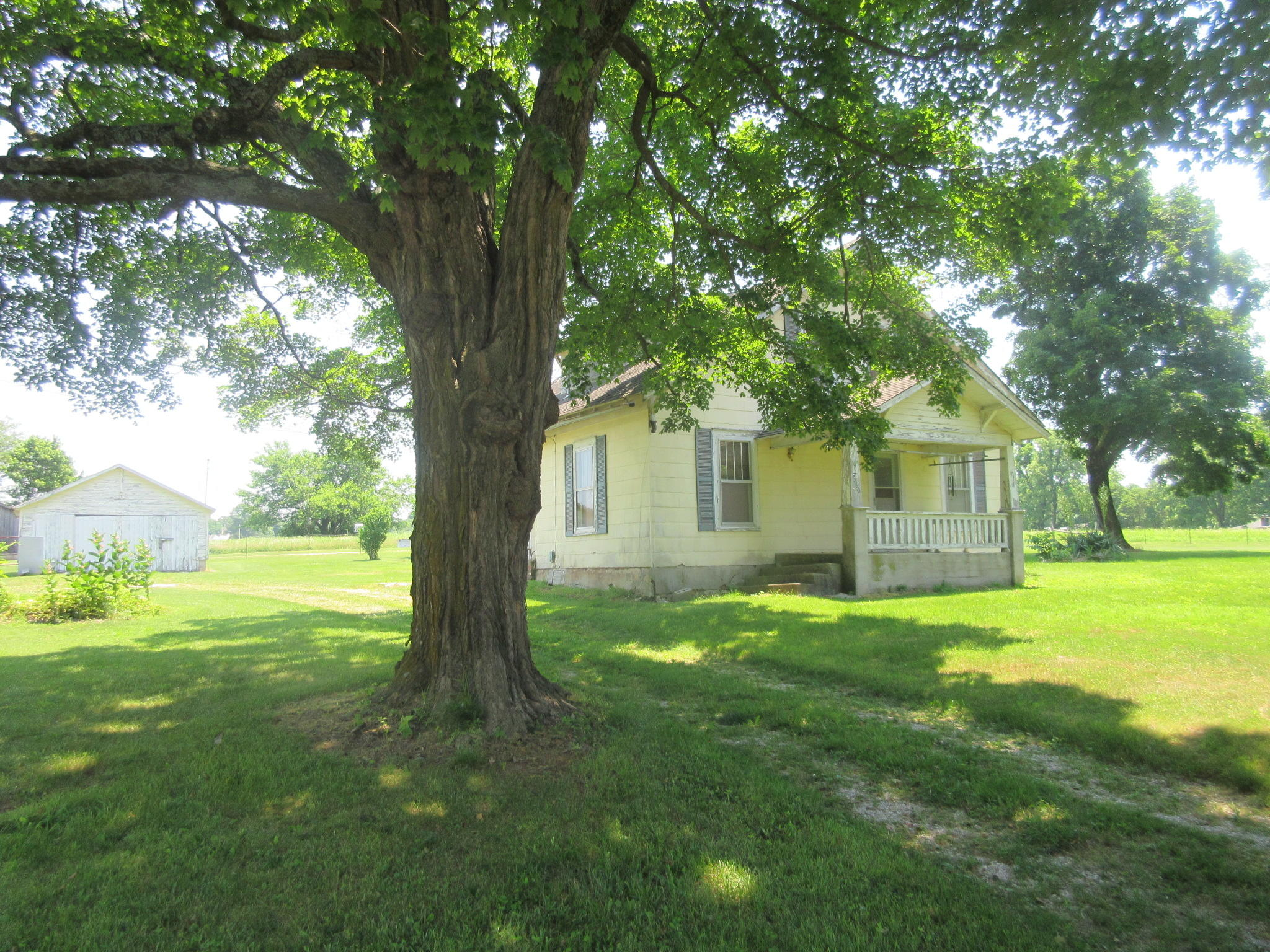 6330 South Farm Road Rogersville, MO 65742