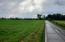 000 South Farm Road 115, Springfield, MO 65807