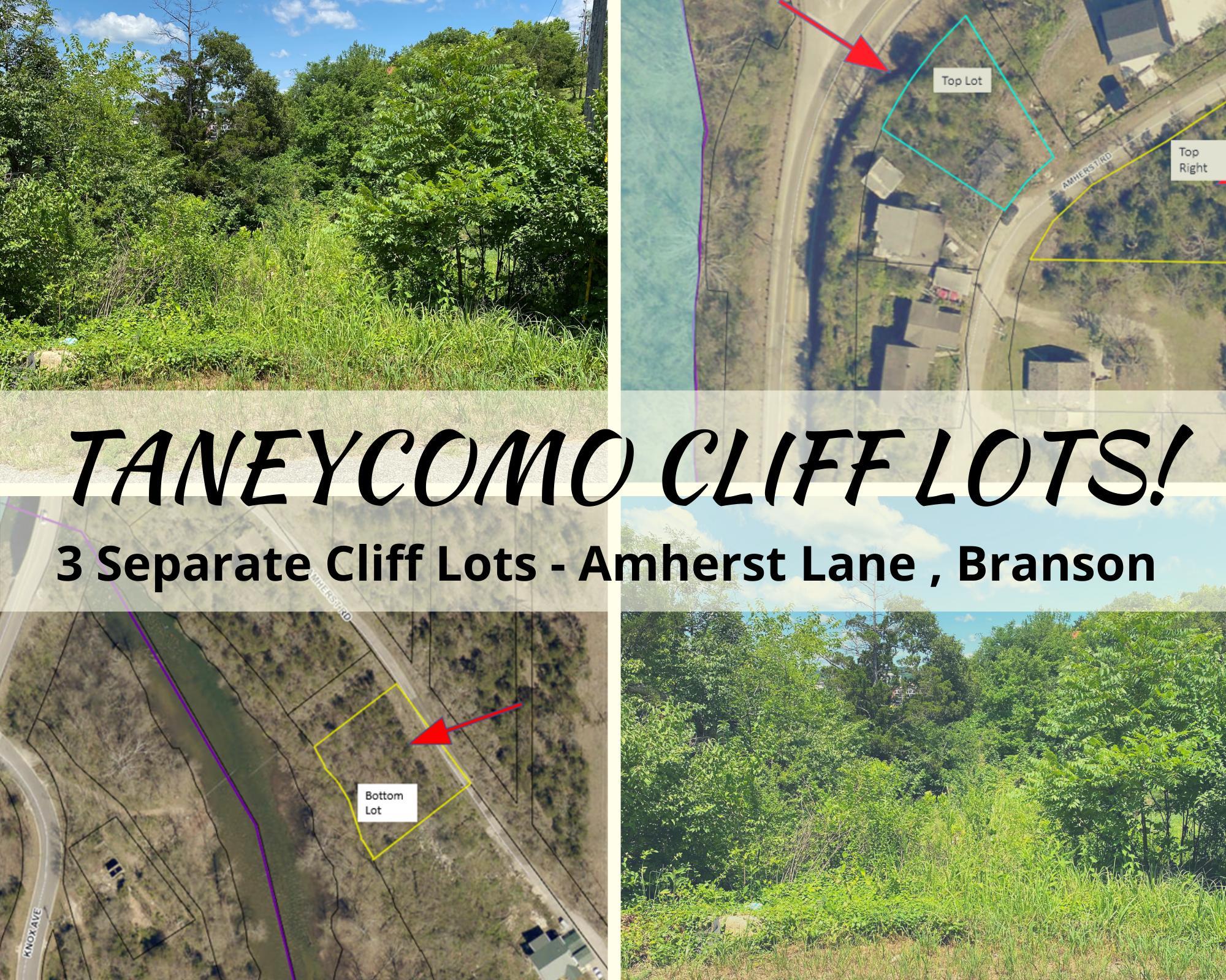 000 Longview Lots 13-19 Branson, MO 65616