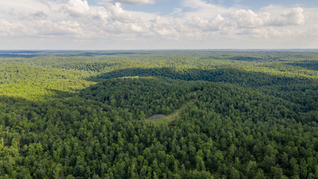 000 North Missouri Birch Tree, MO 65438