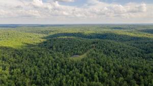 000 North Missouri 99, Birch Tree, MO 65438