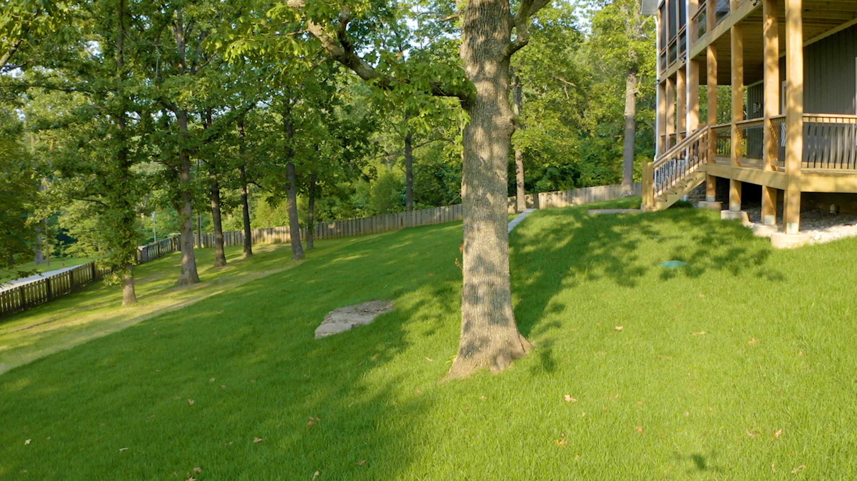 11 Sophie Circle Lampe, MO 65681