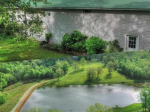 10781 State Hwy Mm, Pottersville, MO 65790