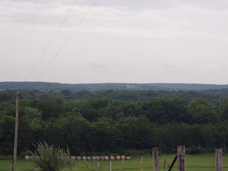 000 Old Sycamore Loop, Marshfield, Missouri 65706