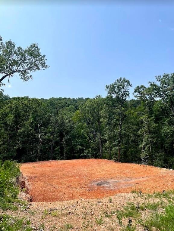 000 Country Meadows Estates Highlandville, MO 65669