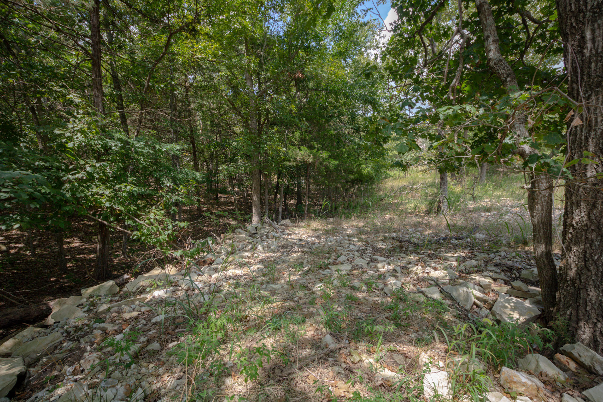 Tbd Lot 9 Overlook Phase Kimberling City, MO 65686