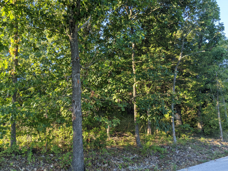 Lot 6 Longview Drive Kimberling City, MO 65686