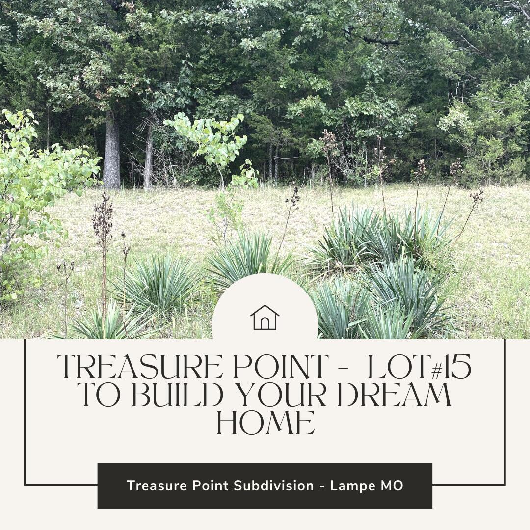 Lot 15 Treasure Lampe, MO 65681