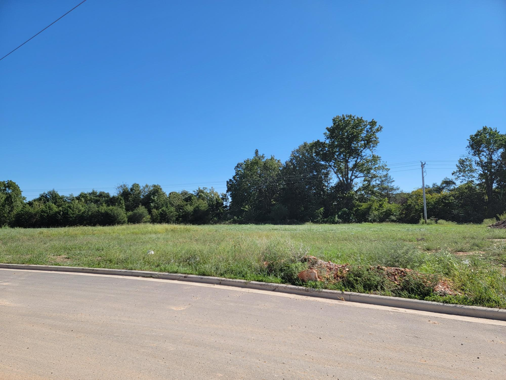4144 West Sycamore Drive UNIT Lot 29 Battlefield, MO 65619