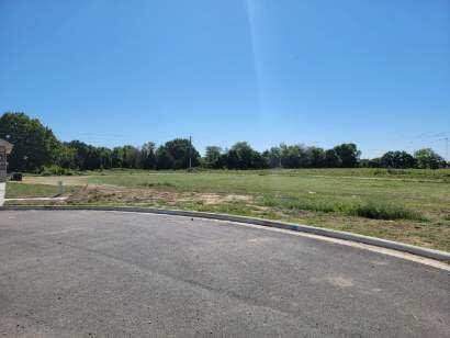 6121 South Brookside Lane UNIT Lot 87 Battlefield, MO 65619