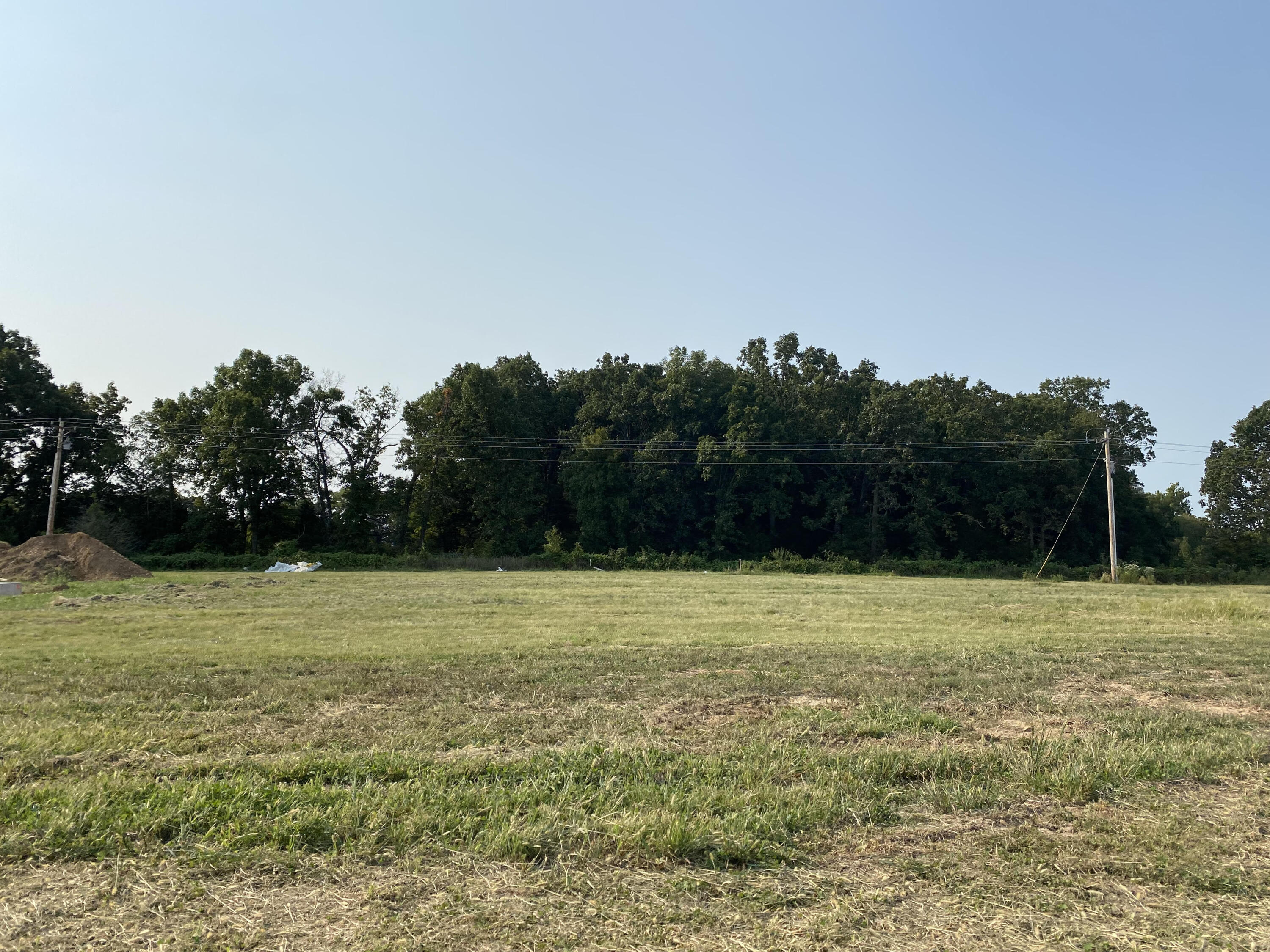 4214 West Sycamore Drive UNIT Lot 37 Battlefield, MO 65619