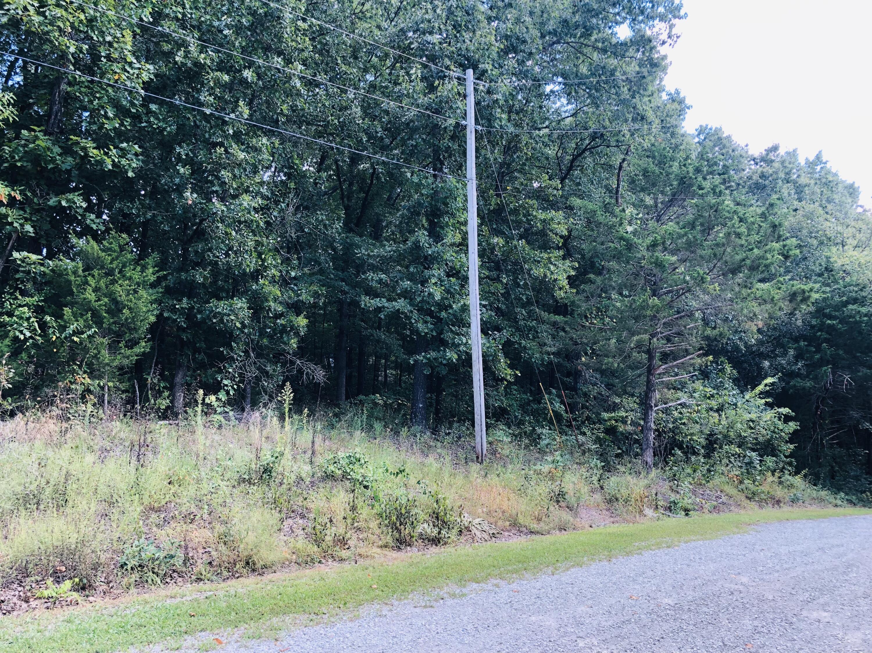 000 Red Bud Lane Ridgedale, MO 65739