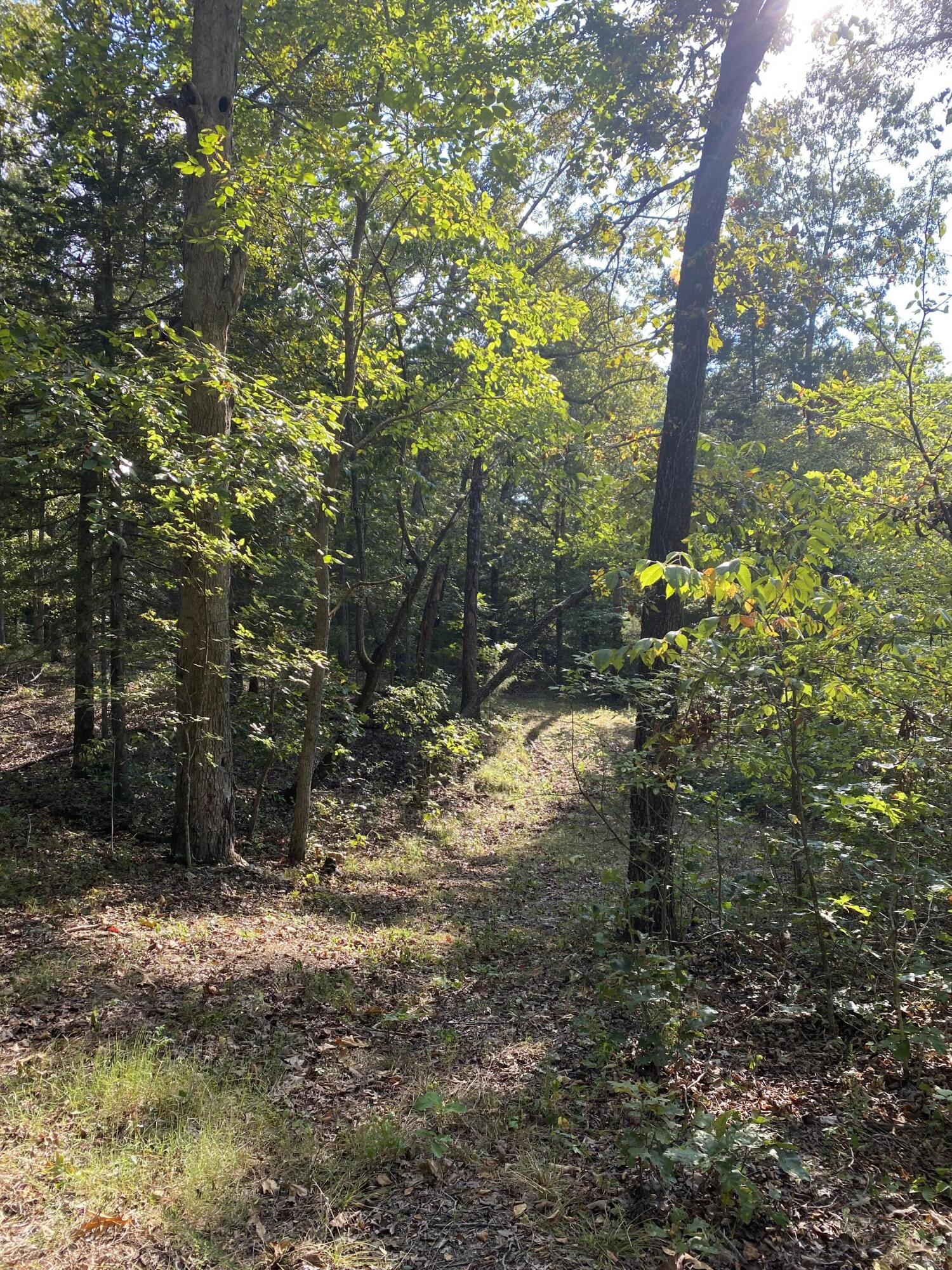 Lot #10 Tierra Trail Lampe, MO 65681