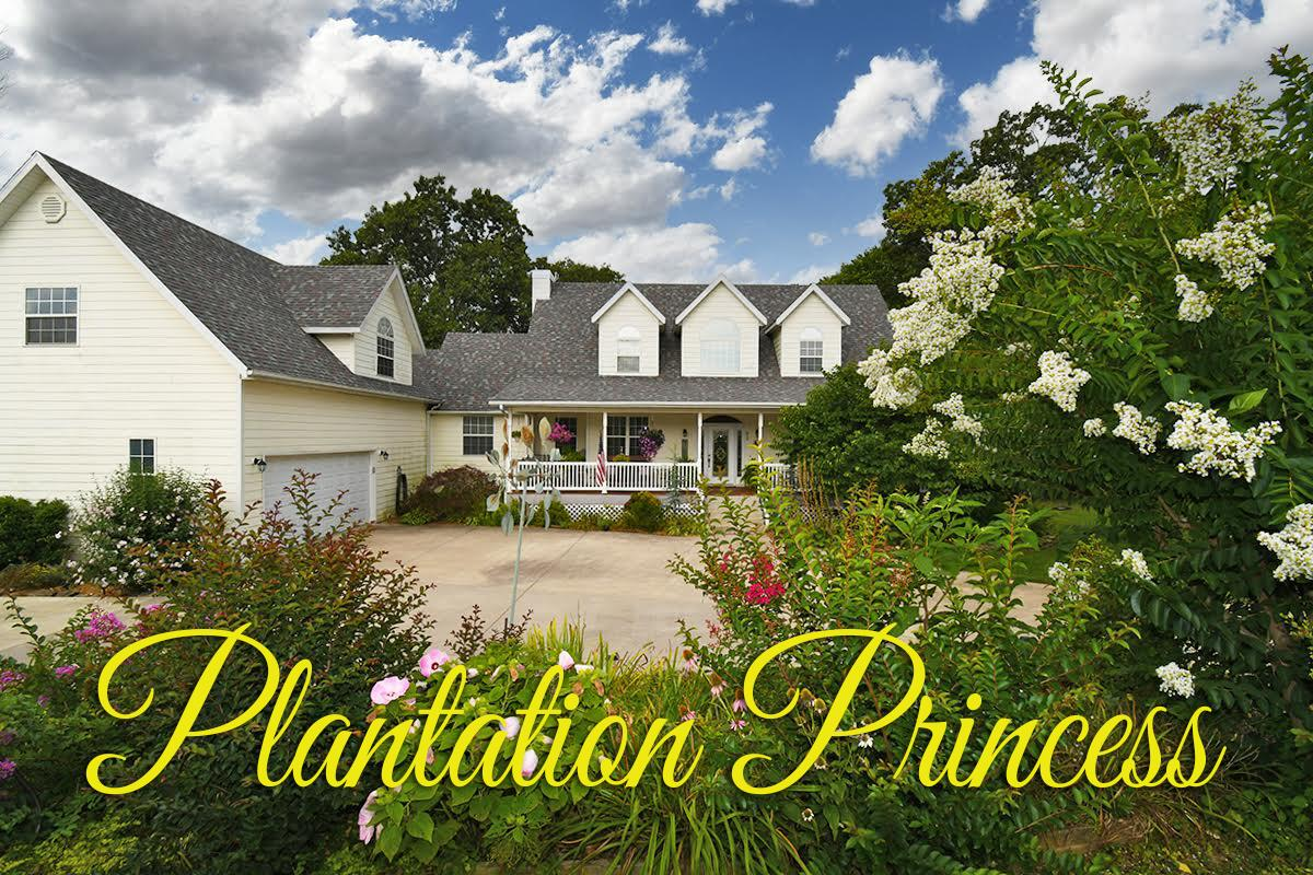 850 Ranch Estates Drive Highlandville, MO 65669