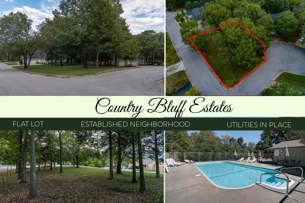 Lot 21 Country Bluff Estates Branson, MO 65616
