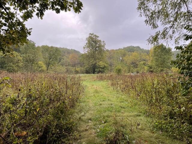 000 Farm Road Seligman, MO 65745