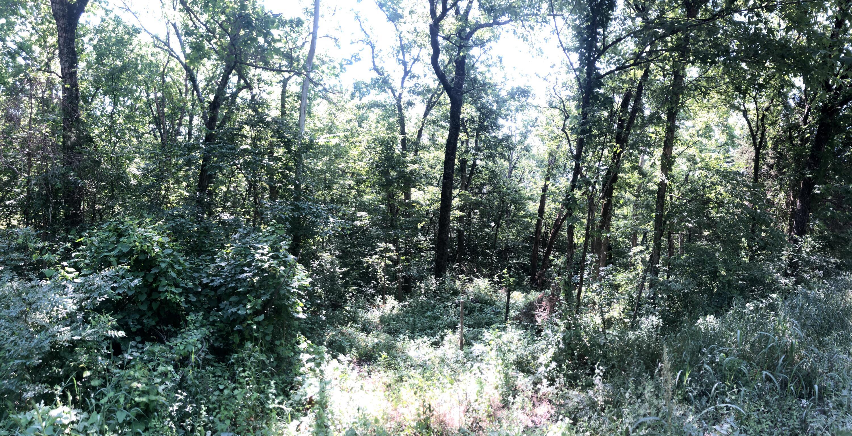 Tbd Glenwood Merriam Woods, MO 65740