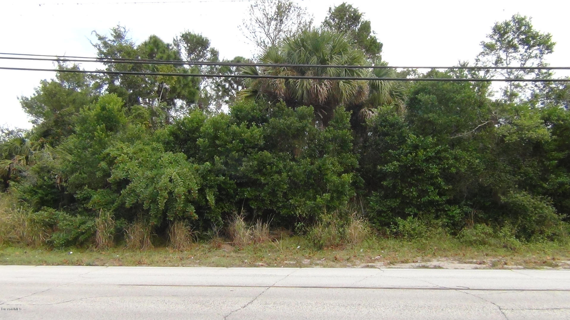 645 N Carpenter Road Lot 3 Titusville, FL 32796 711563
