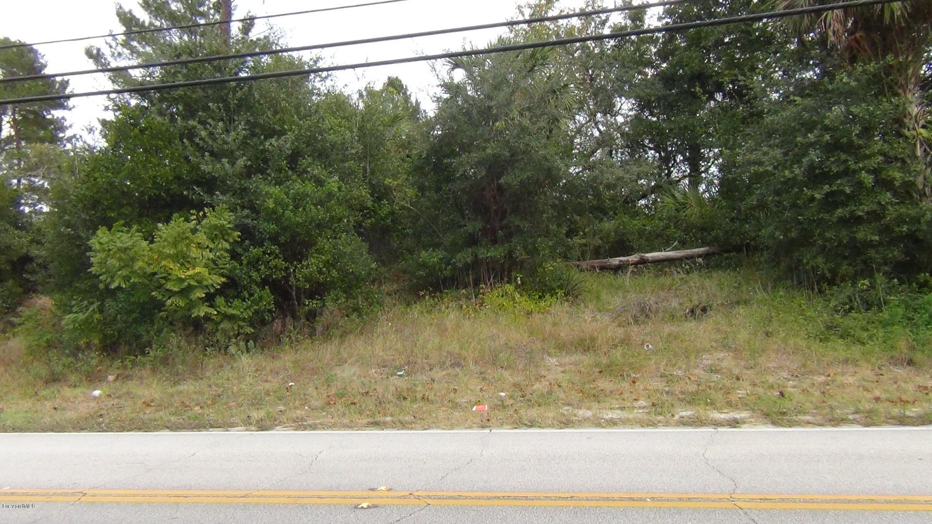 645 N Carpenter Road Lot 1 Titusville, FL 32796 711557