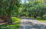 Winding Wooded Driveway