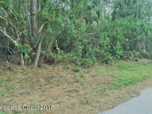 199 Aquarius Avenue SE, Palm Bay, FL 32909