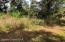 Residential lot - path leading to Indian River