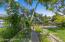 Large backyard garden area