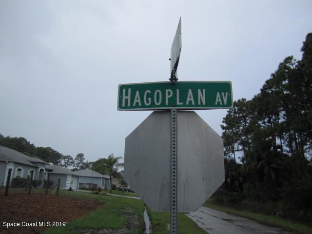 2431 Hagoplan Avenue