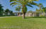 Nice yard!