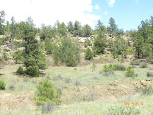 lot 179 Rancho La Garita, Trinidad, CO 81082