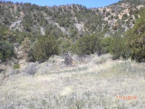 Ponderosa Hills Phase II #120 & Lot 121, Trinidad, CO 81082