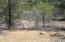 Delagua Canyon 240 acres, Trinidad, CO 81082